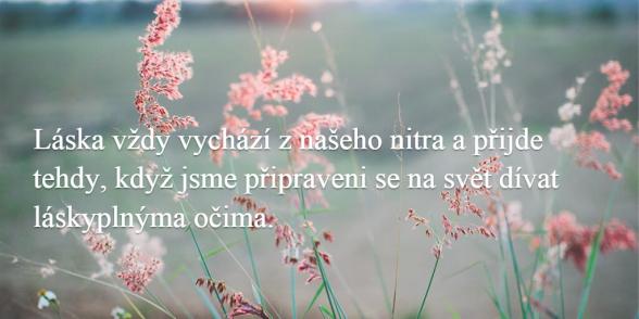 pablo (11)